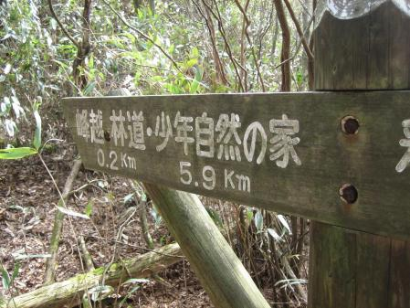 矢部村 釈迦岳 128 - コピー