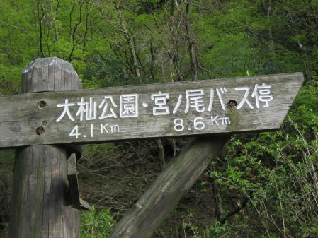 矢部村 釈迦岳 162 - コピー