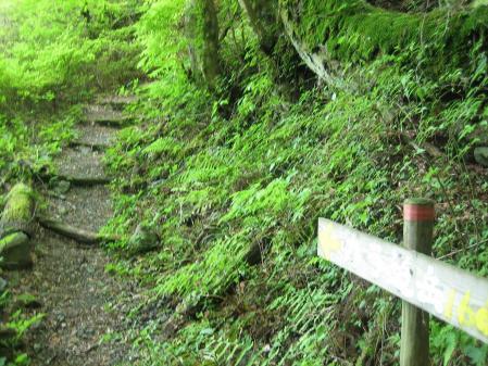 カラ迫山 028 - コピー