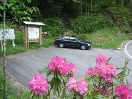 カラ迫山 027 - コピー