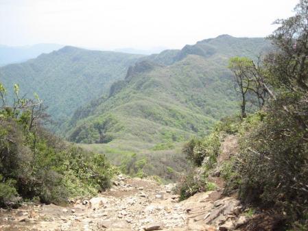 祖母山 152