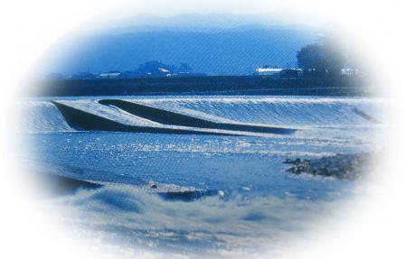 大石堰 002