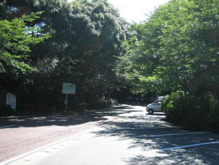 清水の花 2山道 021