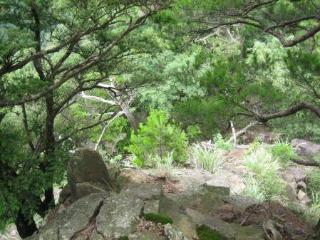 山伏 多良岳 053