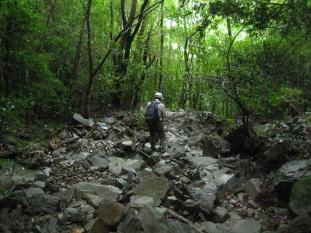 山伏 多良岳 176 - コピー