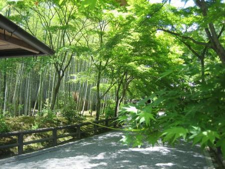 守山と京都 079