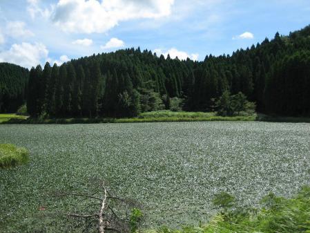 樫原湿原 2 048 - コピー