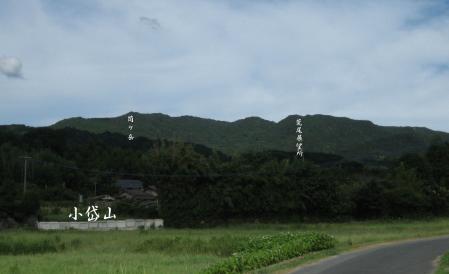 小岱山のミヤマウズラ 2 078 - コピー
