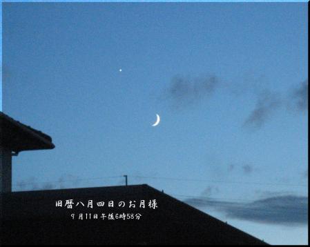 小岱山の花 美術館用 051 - コピー