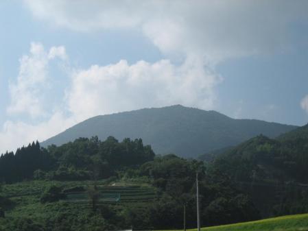 作礼山の花 087 - コピー