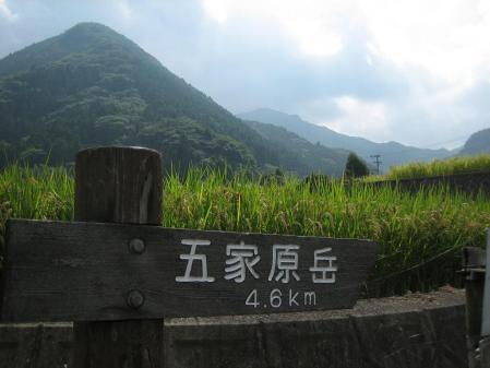 金泉寺 1 007 - コピー