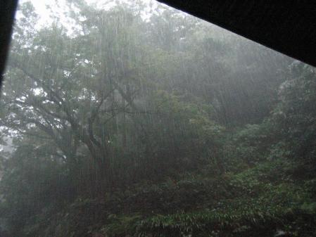 秋雨の清水山 015 - コピー