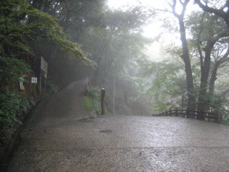 秋雨の清水山 035 - コピー