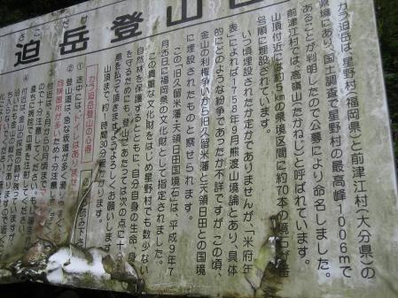 カラ迫山の花 165 - コピー
