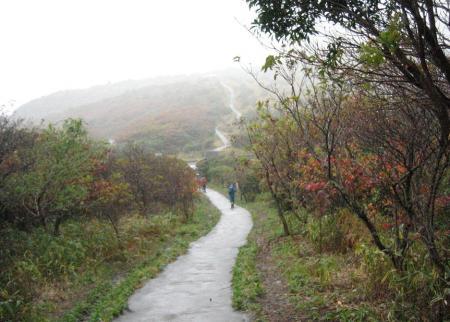 雨の九重連山 019 - コピー