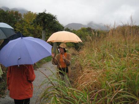 雨の九重連山 067 - コピー