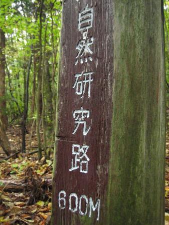 雨の九重連山 088 - コピー