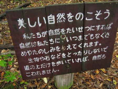 雨の九重連山 093 - コピー