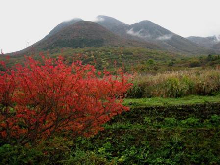 雨の九重連山 126 - コピー