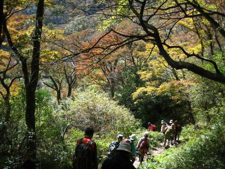 雲仙岳 バンブー 123 - コピー