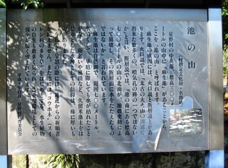 星野村 花 2 006 - コピー