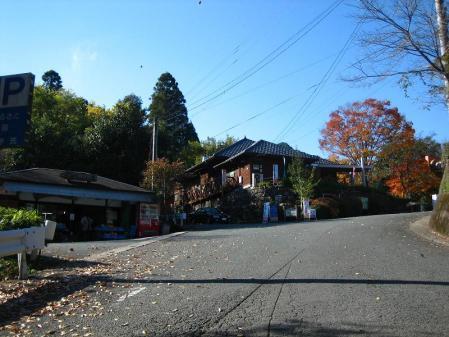 星野村 花 2 004 - コピー