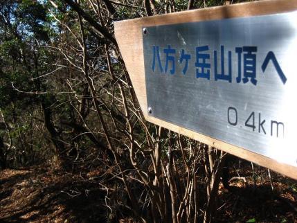八方ヶ岳 069 - コピー