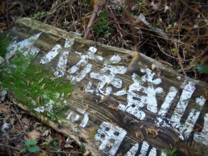 八方ヶ岳 144 - コピー