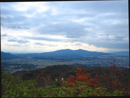 小岱山の花 004 - コピー