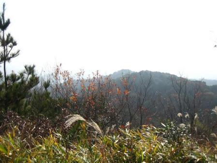蛇ヶ谷登山口 052 - コピー