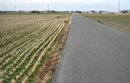 柳川へ歩く 028 - コピー