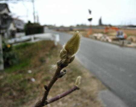 柳川へ歩く 047 - コピー
