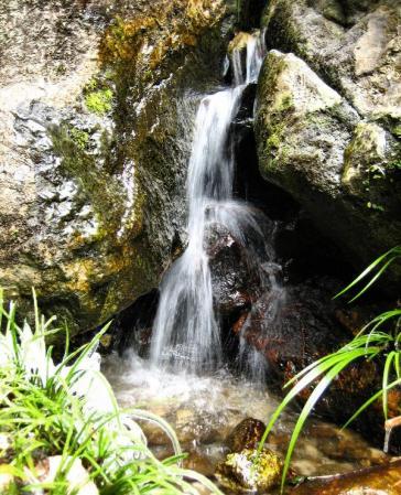 清水の滝 021 - コピー