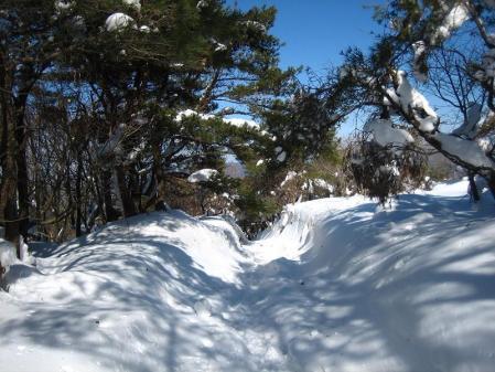 天山へ登る 132 - コピー
