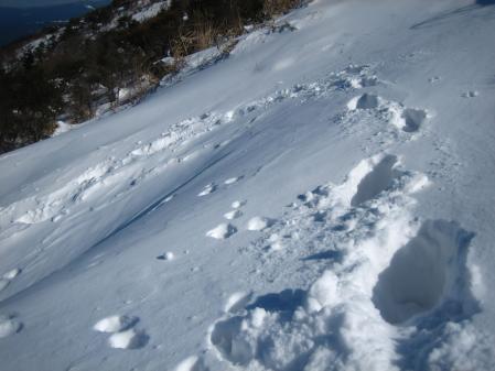 天山へ登る 122 - コピー