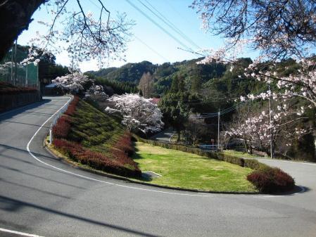 カラ迫岳 088 - コピー