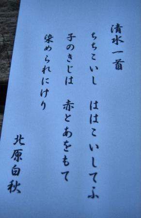 清水の桜 066