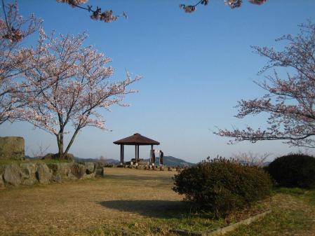 清水の桜 134