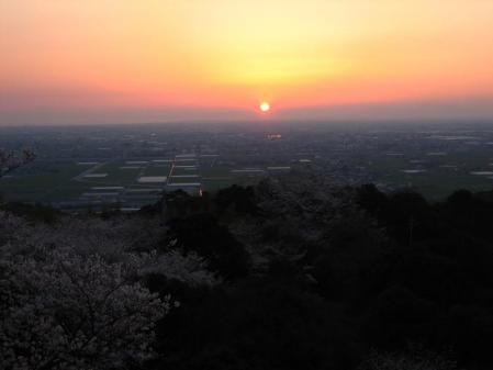 清水の桜 202