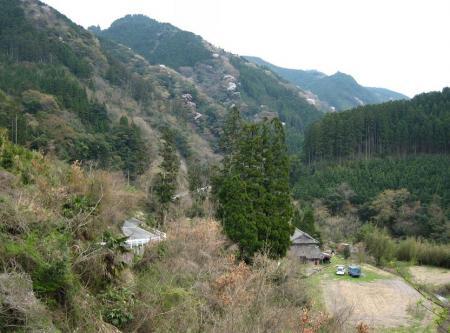 カラ迫山開き 242 - コピー