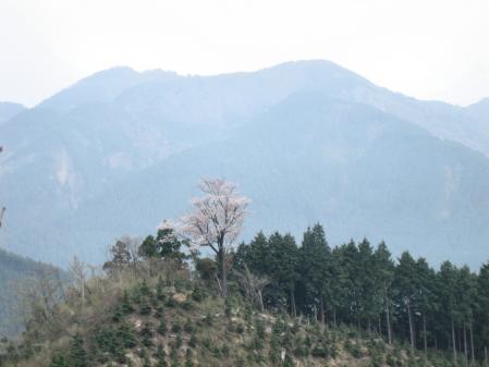カラ迫山開き 240 - コピー