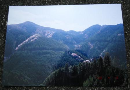 カラ迫山開き 235 - コピー