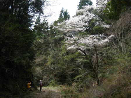 カラ迫山開き 231 - コピー