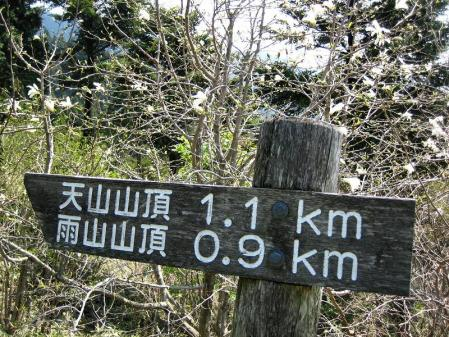 天山の花 022 - コピー