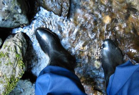 洗い谷コース 060