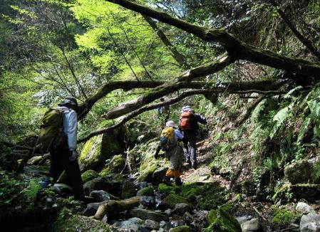 洗い谷コース 059