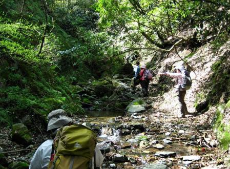 洗い谷コース 074