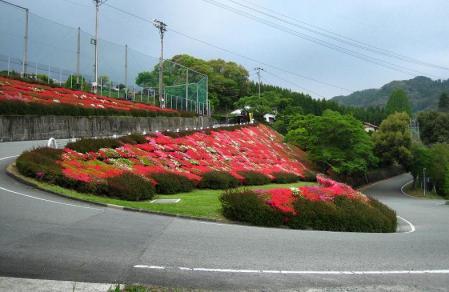 石割岳 094