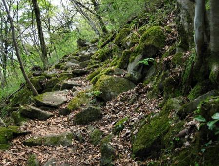 石割岳 060