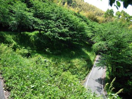 清水山 080